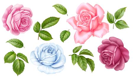 Bloemen set van roze, rode, blauwe witte vintage roos bloemen groene bladeren geïsoleerd op een witte achtergrond. Digitale aquarel illustratie. Stockfoto