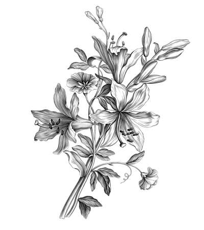 Lilies flowers bouquet vintage botanical illustration Baroque Victorian engraved garden wild floral ornament frame border scroll bunch retro decorative tattoo black and white filigree vector