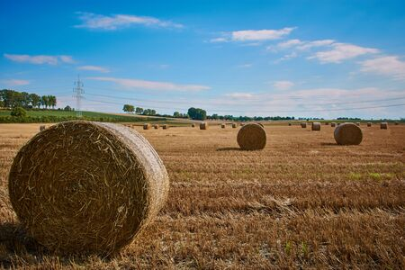Hay bales on a mown grain field against a blue sky