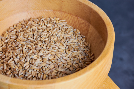 spelt grains in a flour mill, macro photo