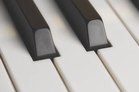 close up of black and white piano keys in matt style