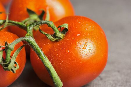 macro of fresh raw vine tomatoes with water drops