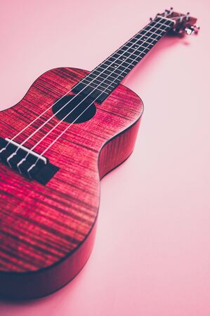 pink ukulele on pink background in a matt style