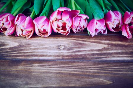 at the top of the photo a row of pink double tulips, copy space on wooden background