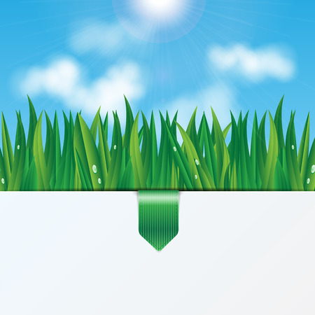 pulp: natural background.eco background.green grass with dew drops on a background of blue sky.vector
