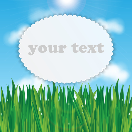 nebulous: natural background.eco background.green grass with dew drops on a background of blue sky.vector