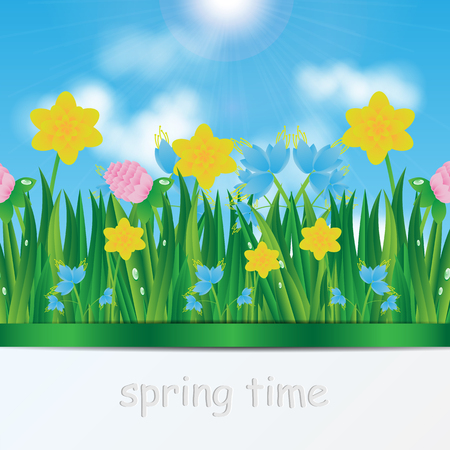 natural background.eco background.green grass and flowers on a background of blue sky.vector