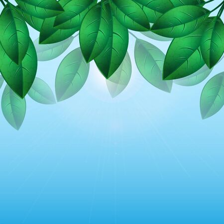 sunup: green leaves on a background of blue sky.natural background.floral design.Place for your text. vector Illustration