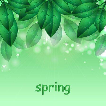 vegetal: green spring leaves.natural background.floral design.Place for your text. vector