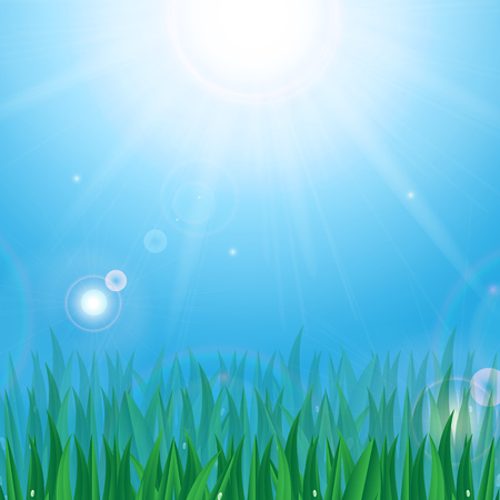 Sun and green grass with dew drops on background blue sky Illustration