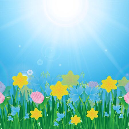 Meadow with colorful flowers and green grass on a background of blue sky and sun Illustration