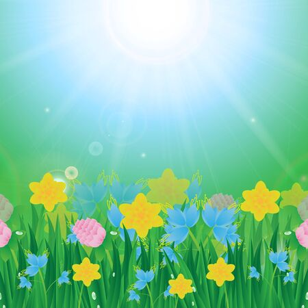 Meadow with colorful flowers and green grass on a background of blue sky and sun Ilustrace