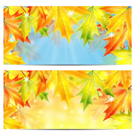 frondage: Set of autumn backgrounds with yellow and orange maple leaves