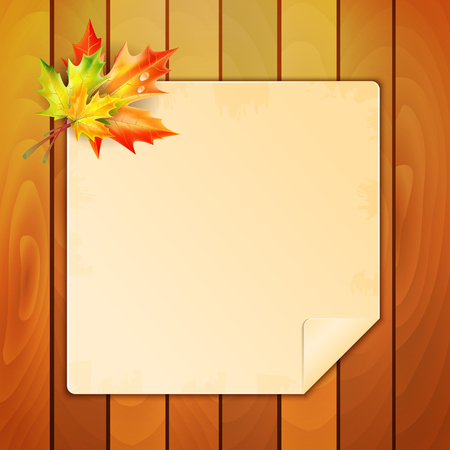 scholastic: Sheet of paper with a place for your text decorated with autumn maple leaves Illustration