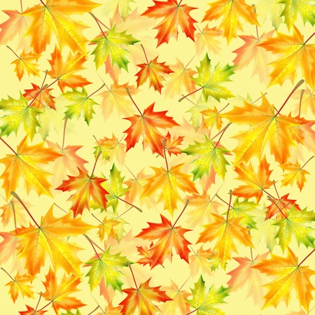 leafed: Autumn background with maple leaves