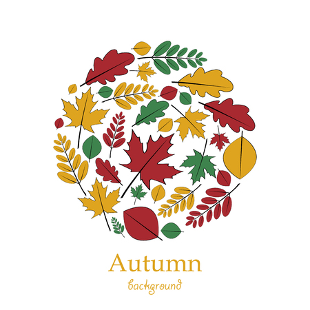 Set of autumn leaves located on a circle
