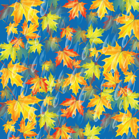 leafed: Autumn background.Background with rain drops and maple leaves.Transparent drops of rain on a blue background