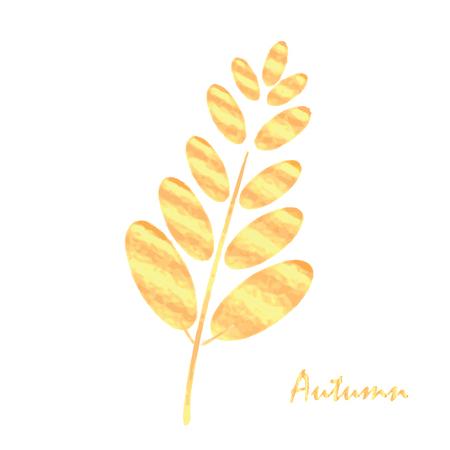 Golden autumn leaf rowan.Autumn leaf design element.Autumn leaf, isolated on white background.