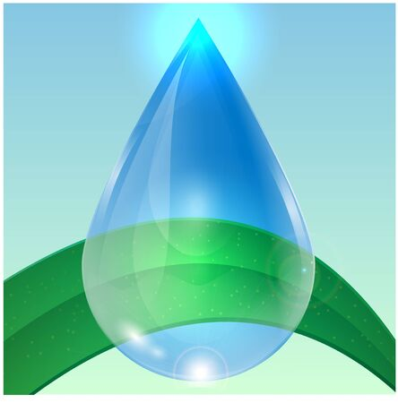 ablaze: green plant and a drop of water