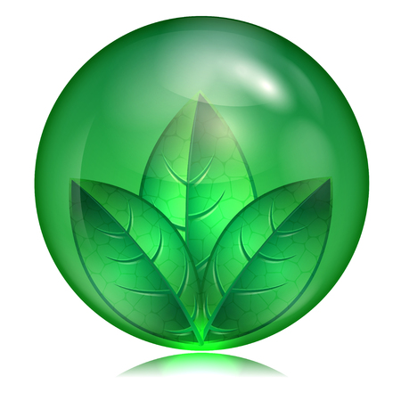green leaf in a green sphere on a white background