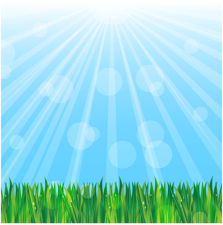 green grass on a background blue sky