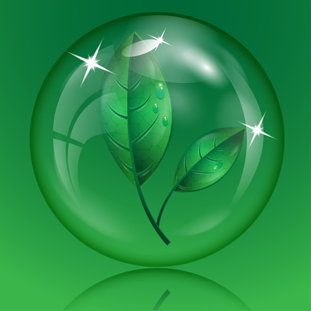 flowed: green leaves with drops of water in a transparent sphere on a green background