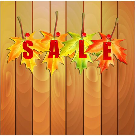 Yellow maple leaves and the word sale on the wooden wall.illustration of autumn seasonal sale.vector Illustration