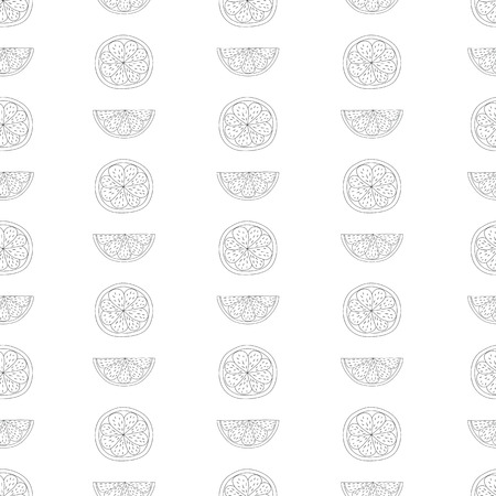Hand drawn  seamless pattern with lemons, oranges, limes .Vector fruit illustration.Black and white  seamless pattern on white background .