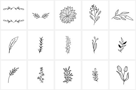 Hand drawn elements and icons. Hand drawn decorative vector elements with flower design .
