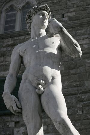 penis: Michelangelos replica David statue late in the day as the sun casts long shadows over the city of Florence.