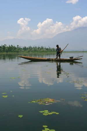 kashmir: A young boy in Kashmir, India, collecting grass off the bottom of a lake.