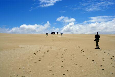 desert footprint: Desert walk