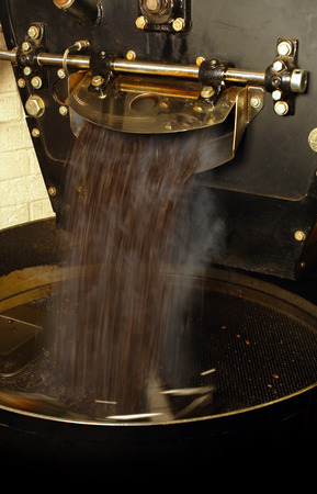 roaster: A large coffee roaster, just as the beans are extracted and slowly stirred in the cooling cylinder.