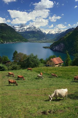 Looking over Lake Lucerne in Switzerland Stock Photo