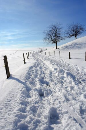 road and path through: A snowy path or road widing up a hill through the countryside.