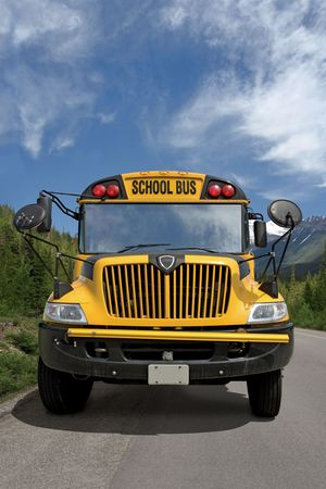 yellow: Front view of a school bus on a rural road.
