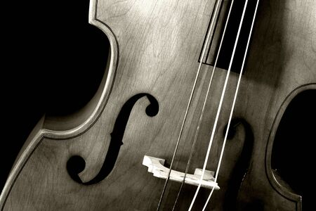 Image of a double bass or standup bass, on a black background. photo