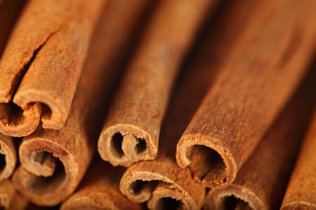 cinnamon stick: Macro photo of the ends of cinnamon sticks.  Very shallow depth of field with the focus on the middle stick.
