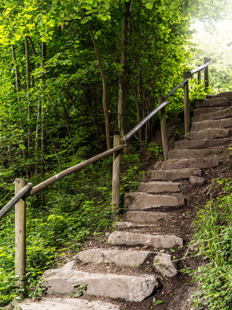 stone steps: Photo of a stone staircase leading out of the forest.