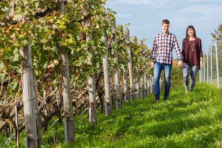 Photo of a young couple holding hands and walking through a vineyard. photo