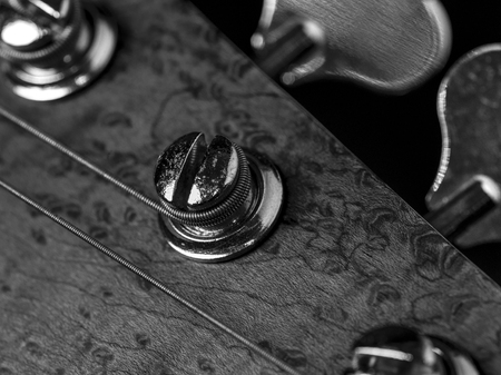 Black and white photo of a bass guitar headstock and tuning pegs.