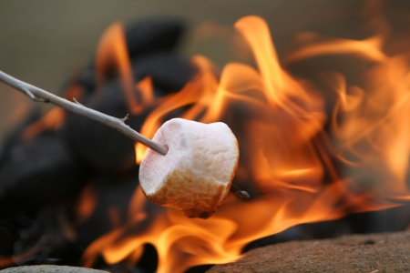marshmallow on a stick being roasted over a camping fire