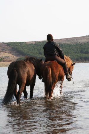 person riding 2 horses, crossing a river/lake