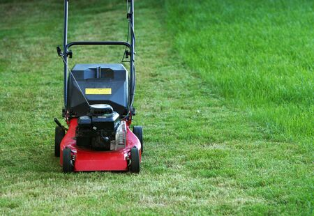 mow: Lawnmower standing on green grass, partly mowed but part still left to mow
