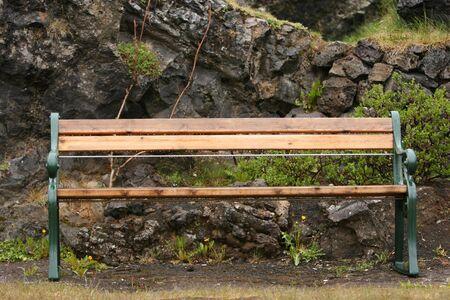 bacca: Garden bench in a botanical garden wet after a afternoon rain Stock Photo