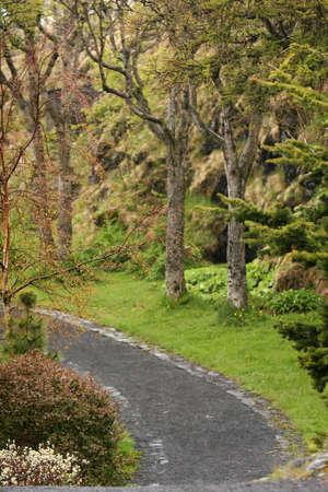 bacca: pretty botanical garden after a springtime rainshower Stock Photo