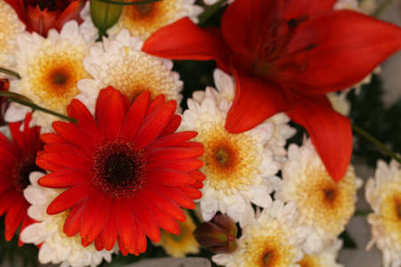 A tight shot of a red and white flower bouquet photo