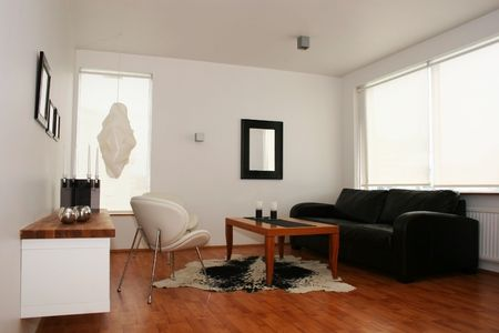 Modern living room, leather sofa, cowhide, design and looks well thought out