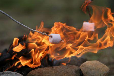 캠핑 불 위에 구운 막대기에 마시맬로