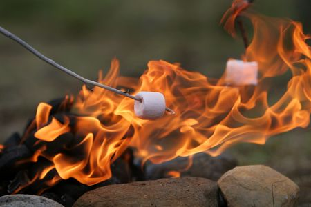 marshmallows: marshmallow on a stick being roasted over a camping fire